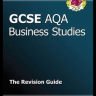 Business studies revision guide